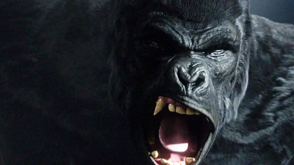 the flash season 2 episode 7 grodd gorilla city